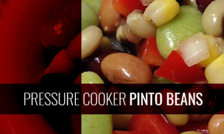 Pressure Cooker Pinto Beans For A New, Tasty Meal