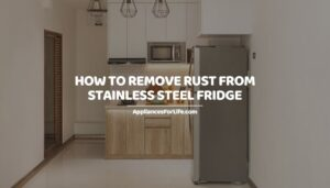 HOW TO REMOVE RUST FROM STAINLESS STEEL FRIDGE