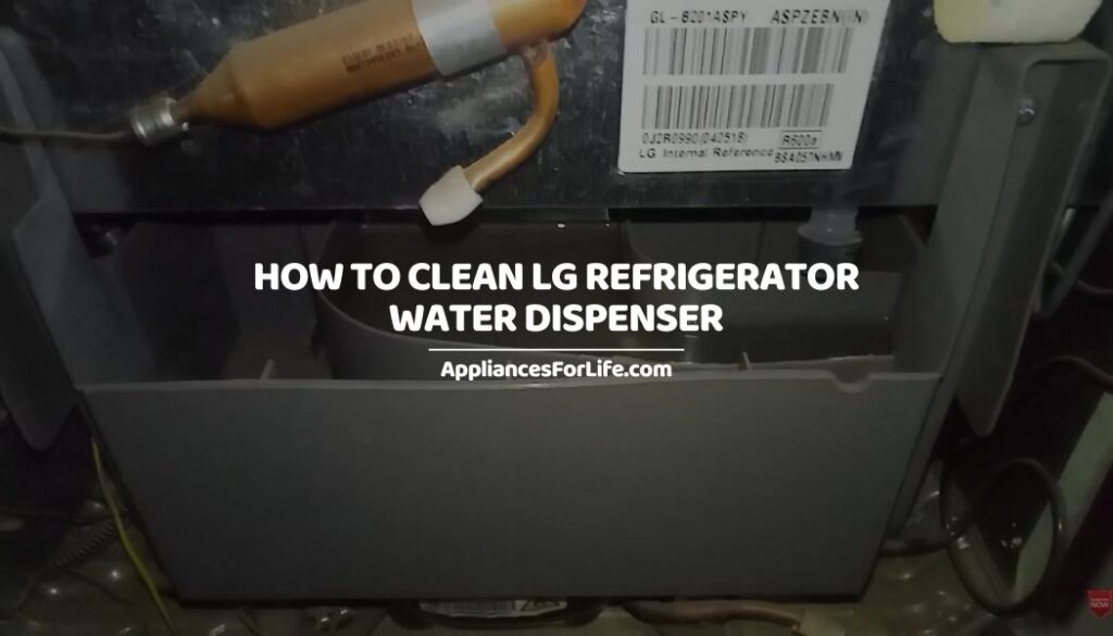How to Clean LG Refrigerator Water Dispenser