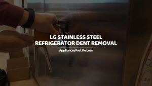 LG Stainless Steel Refrigerator Dent Removal