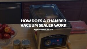 HOW DOES A CHAMBER VACUUM SEALER WORK